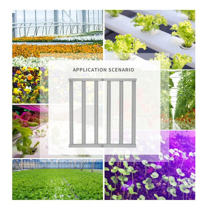 600W Gewächshausgemüsepflanzlicht Pflanzenbeleuchtung