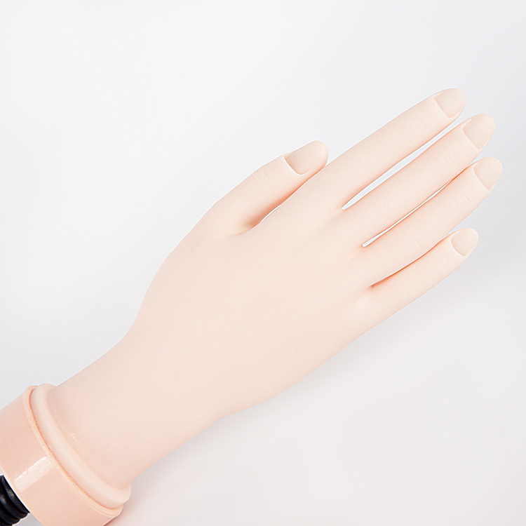 Practice Hand With Holder